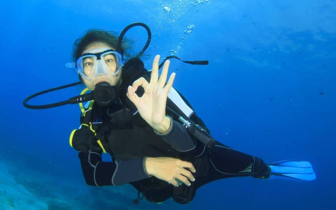 Learn to dive with us!